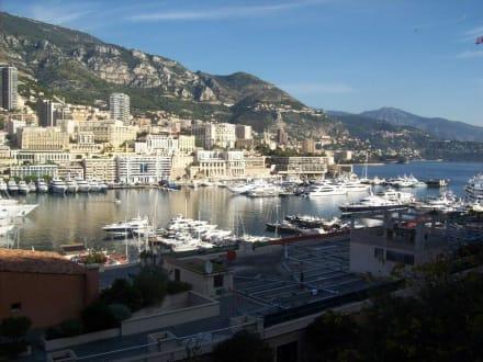 Yachthafen mit Blick nach Monte Carlo - Yachthafen Monaco