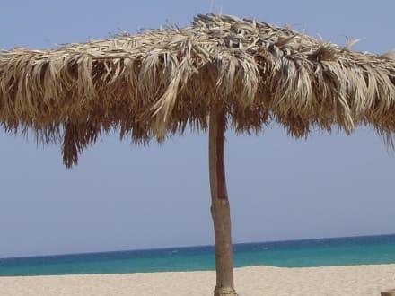 Entspannung auf Giftun! - Giftun / Mahmya Inseln