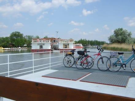 Auslaufen vom Hafen Illmitz - Gangl Radfähre