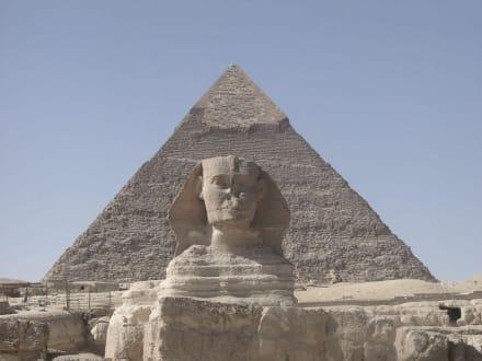 Kairo 2004 - Sphinx von Gizeh