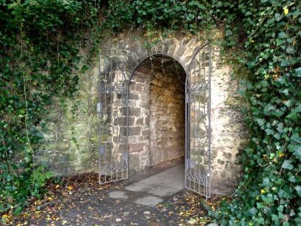 Tunnel Vom Freiland Zu Den Gewächshäusern Bild Alter Botanischer