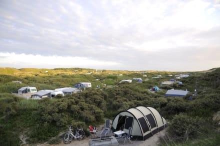 campingplatz bild camping kogerstrand in de koog texel nordholland niederlande. Black Bedroom Furniture Sets. Home Design Ideas