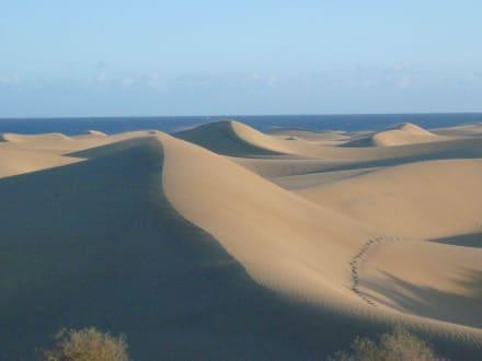 Sonstiges Landschaftmotiv - Dünen von Maspalomas
