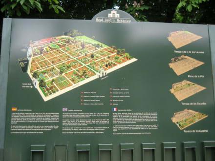 Übersicht - Königlicher Botanischer Garten Madrid
