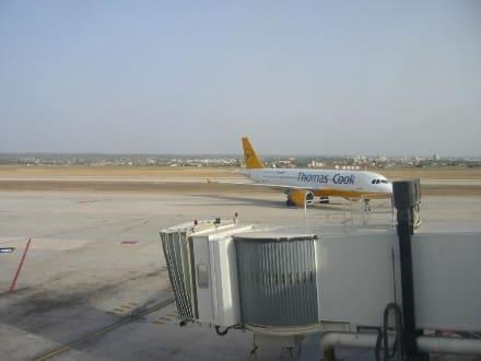 Unsere Maschine beim Rückflug - Flughafen Palma de Mallorca/Son Sant Joan (PMI)