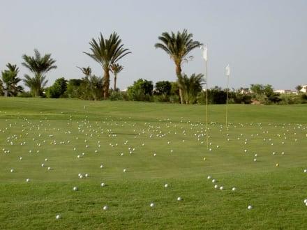Golfplatz - Golf Steigenberger