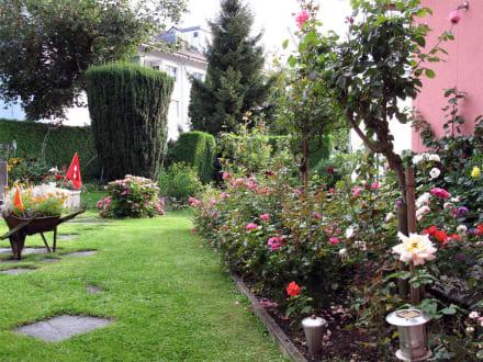 Gartenanlage - Hotel Derby