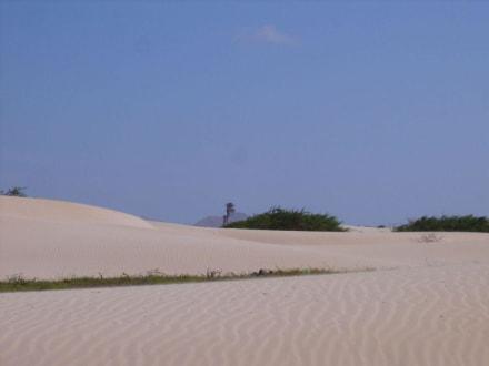 Wüste - Wüste Viana