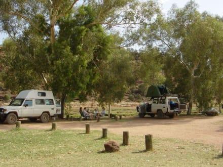 Campingplatz - Palm Valley