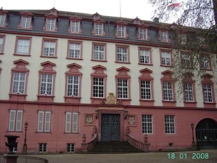 Erbacher Schloss Bild Schloss Erbach In Erbach