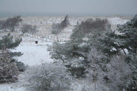 Schnee am Weissenhäuser Strand - Strand Wangels (Weissenhäuser Strand)