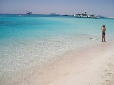 Ausflug Giftun-Insel - Giftun / Mahmya Inseln