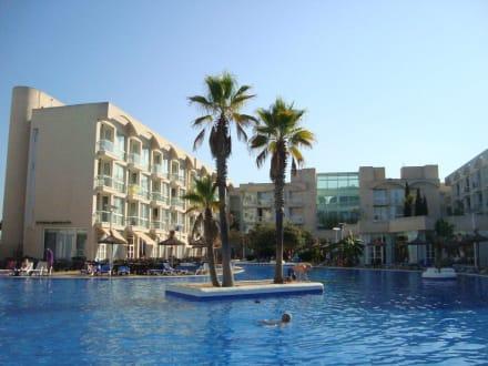 Pool - Hotel Alzinar Mar
