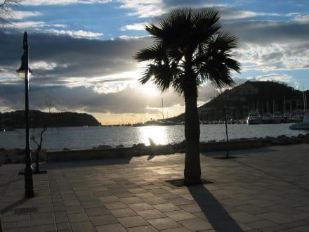 Abendstimmung in Puerto de Andraitx - Hafen Puerto de Andraitx/Port d'Andratx