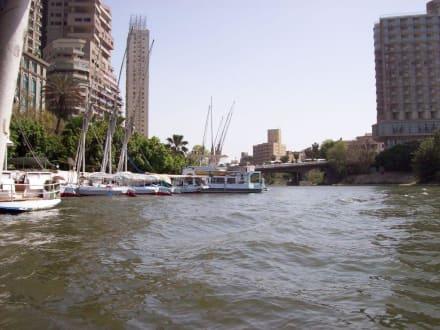 Im Hintergrund Hochäuser von Kairo - Bootstour auf dem Nil