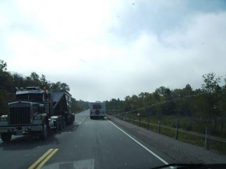 Begegnung auf Highway 144 - Halfway Lake Provincial Park