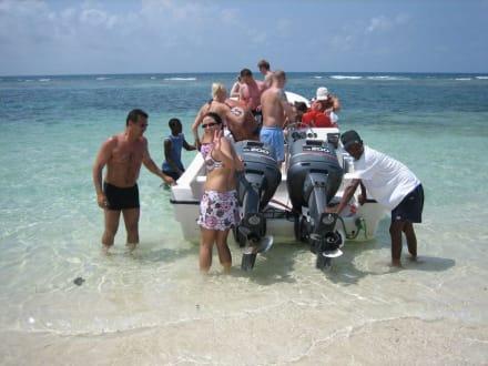 Speedboot - RH Tours Ausflüge Punta Cana