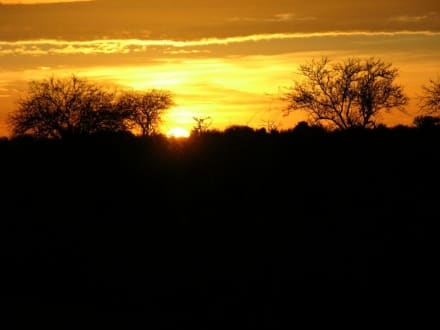 Traumhaft! - Tsavo Ost Nationalpark
