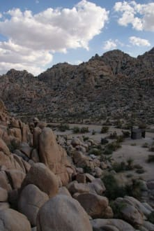 Indian Cove Campground - Joshua Tree National Park