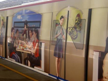 Skyrail - Sky Train
