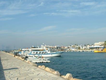 Der hafen - Fischereihafen Ayia Napa/Agia Napa