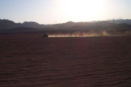 Quadtour in die Wüste - Quad Tour Safaga
