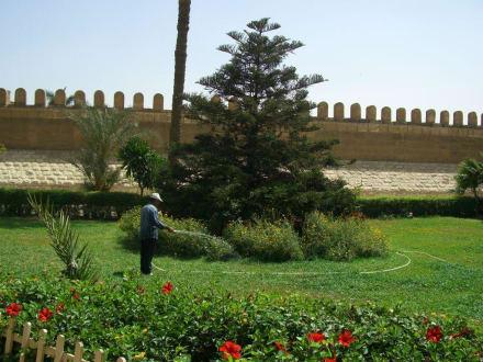 Ohne Wasser kein Rasen in Kairo - Zitadelle