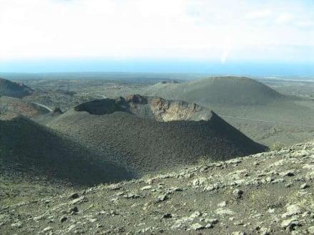 Vulkanrundfahrt - Nationalpark Timanfaya (Feuerberge)