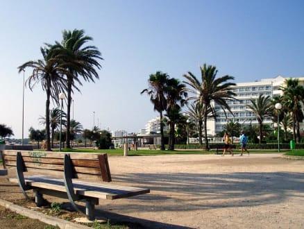 Morgenstimmung in Cala Millor - Strandpromenade Cala Millor