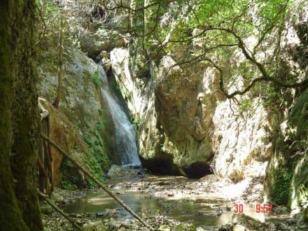 Wasserfall - Westküste