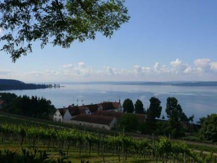 Ausblick auf den Bodensee - Wallfahrtskirche Birnau Uhldingen