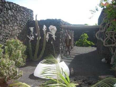 Der Garten Manriques - Fundacion Cesar Manrique