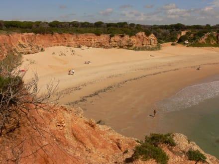 Windgeschützt und einfach schön - Cala del Aceite