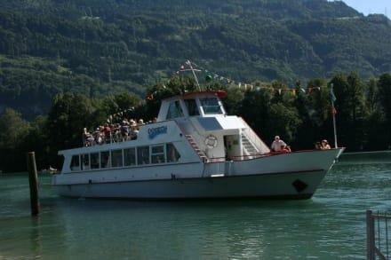 Kursschiff Walensee - Aussenansicht - Walensee