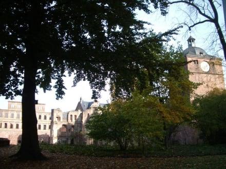 Schloss mit Park - Schloss Heidelberg