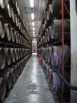 Rumfabrik in Arehucas - Destillerie Arehucas