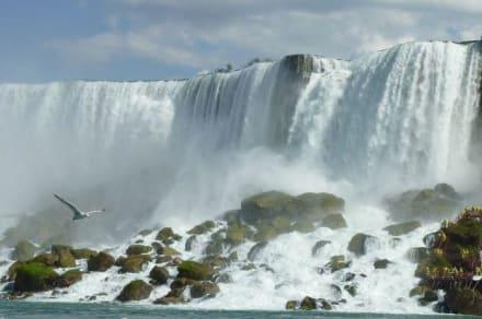 American Falls - Niagarafälle / American Falls
