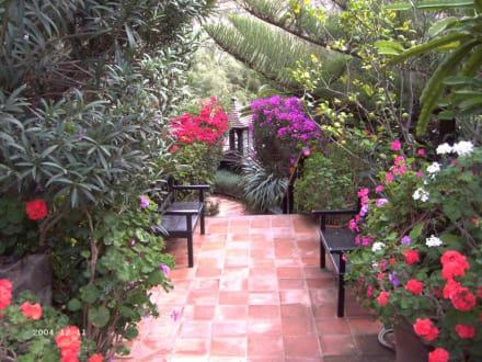 Garten - Cafe Santa Maria