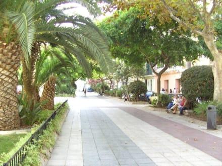 Hauptgeschäftsstraße - Paseo de Vara de Rey