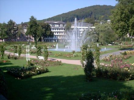 Im Rosengarten - Kurpark mit Rosengarten