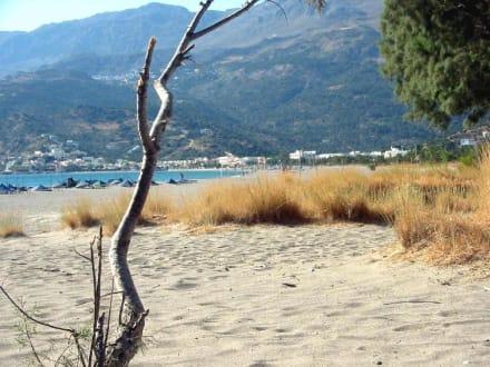 Strand von Plakias - Strand Plakias