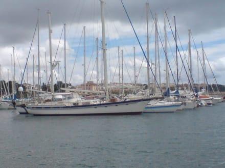 Hafen - Yachthafen El Arenal/S'Arenal