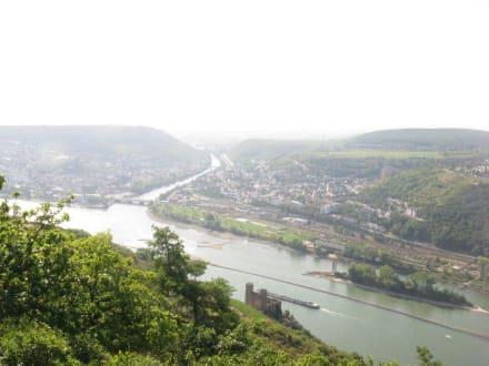 Blick auf den Rhein - Loreley