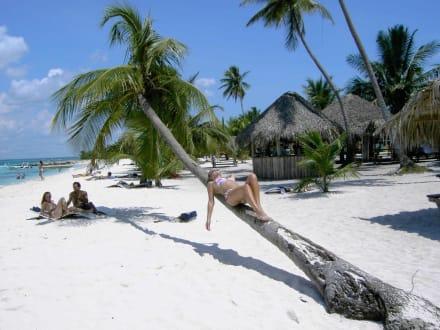 Karibik pur - Isla Saona