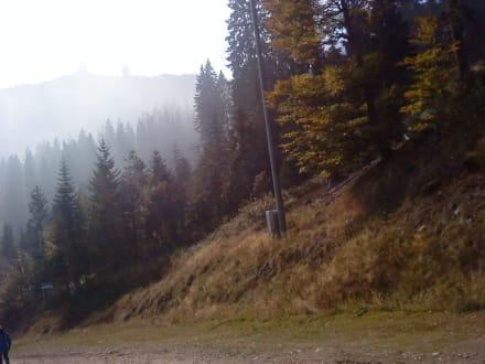 Silberbergwerk In Bodenmais Holidaycheck