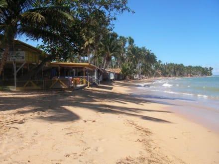 Strand von LasTerrenas - Strand Las Terrenas