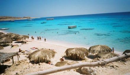 Auflug zu Mahmya - Insel Gobal