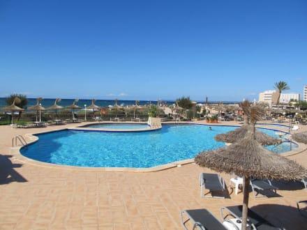 Schwimmpool bild universal hotel don leon in colonia for Schwimmpool angebote