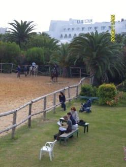 Reitunterricht - Reitstall des Hotel Le Sultan