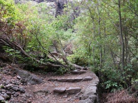Weg im hinteren Teil der Schlucht - Wasserfälle - Barranco del Infierno